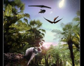 Il Tramonto dei Dinosauri: Le Origini del Volo